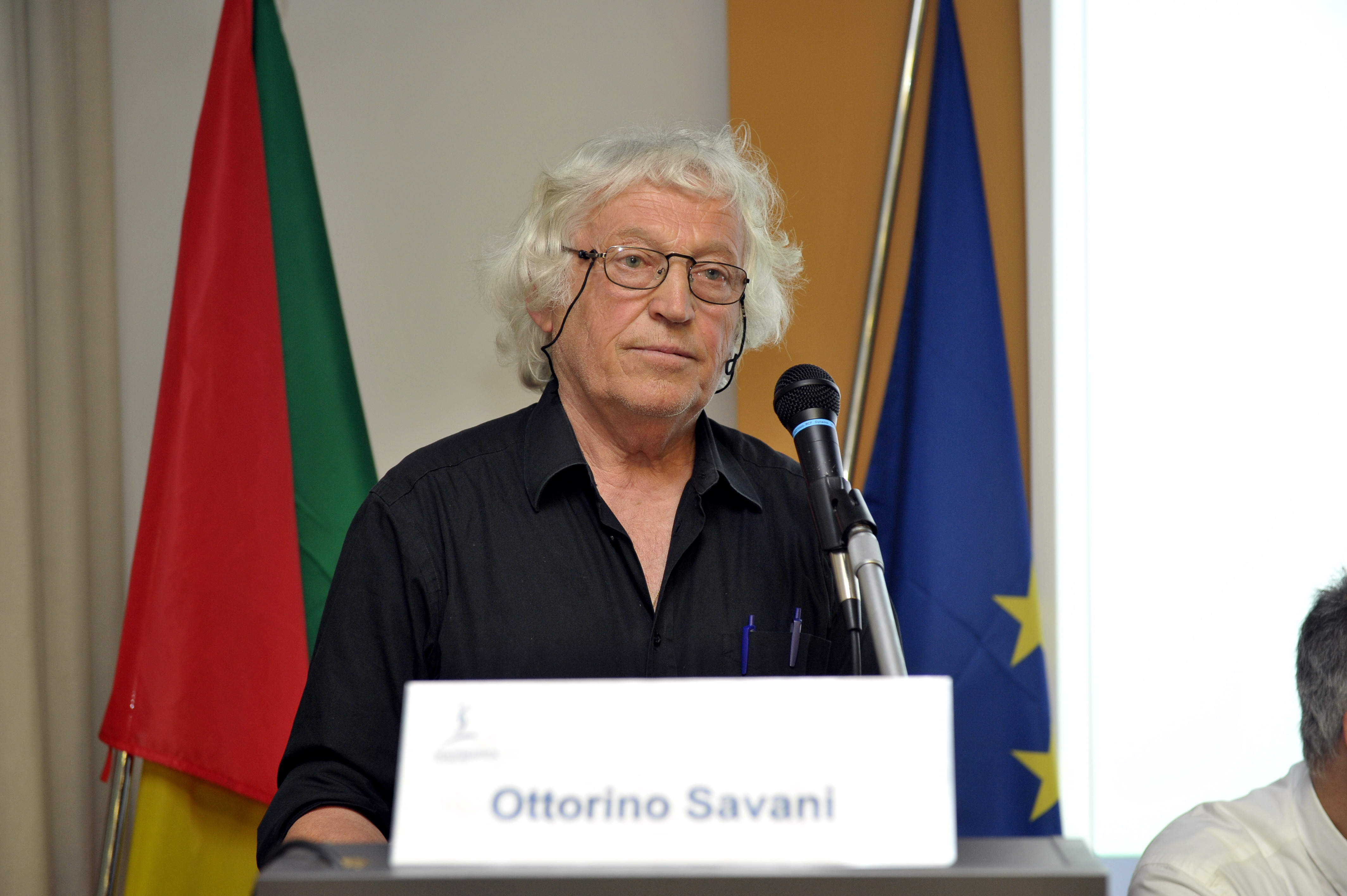 6.6.2015 - Interviene Ottorino Savani, Presidente AIT Onlus